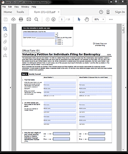 Attorney / Paralegal Software Bankruptcy Form 101