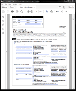 Attorney / Paralegal Software Personal Bankruptcy Form 106